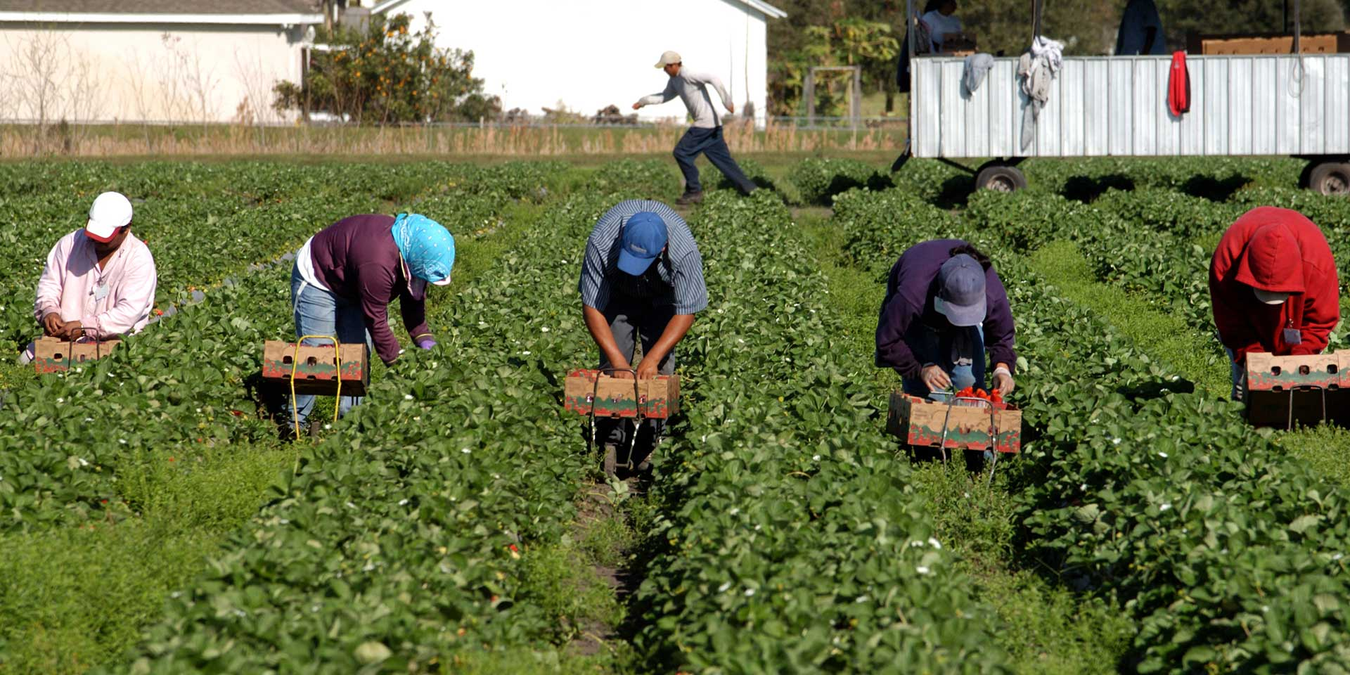 """Featured image for """"US Interventionism, Climate Change and Organizing Low-Wage Food Chain Workers: An Interview with Jose Oliva"""""""